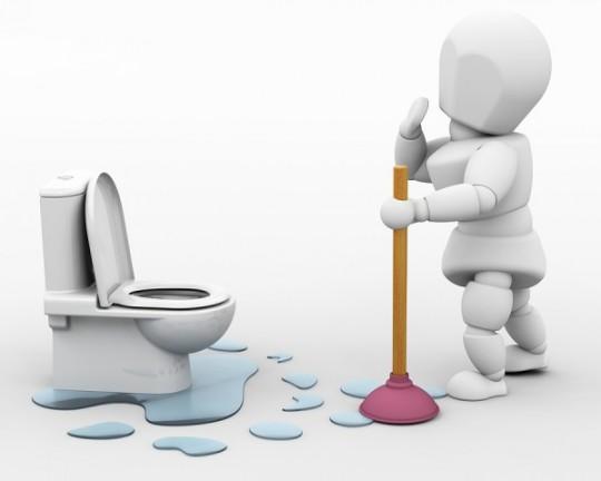 Egy kis toalett-kultúra, avagy a WC négyezer éves története